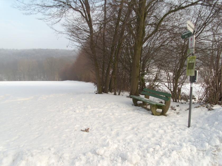 Wallhecke bei Brochterbeck