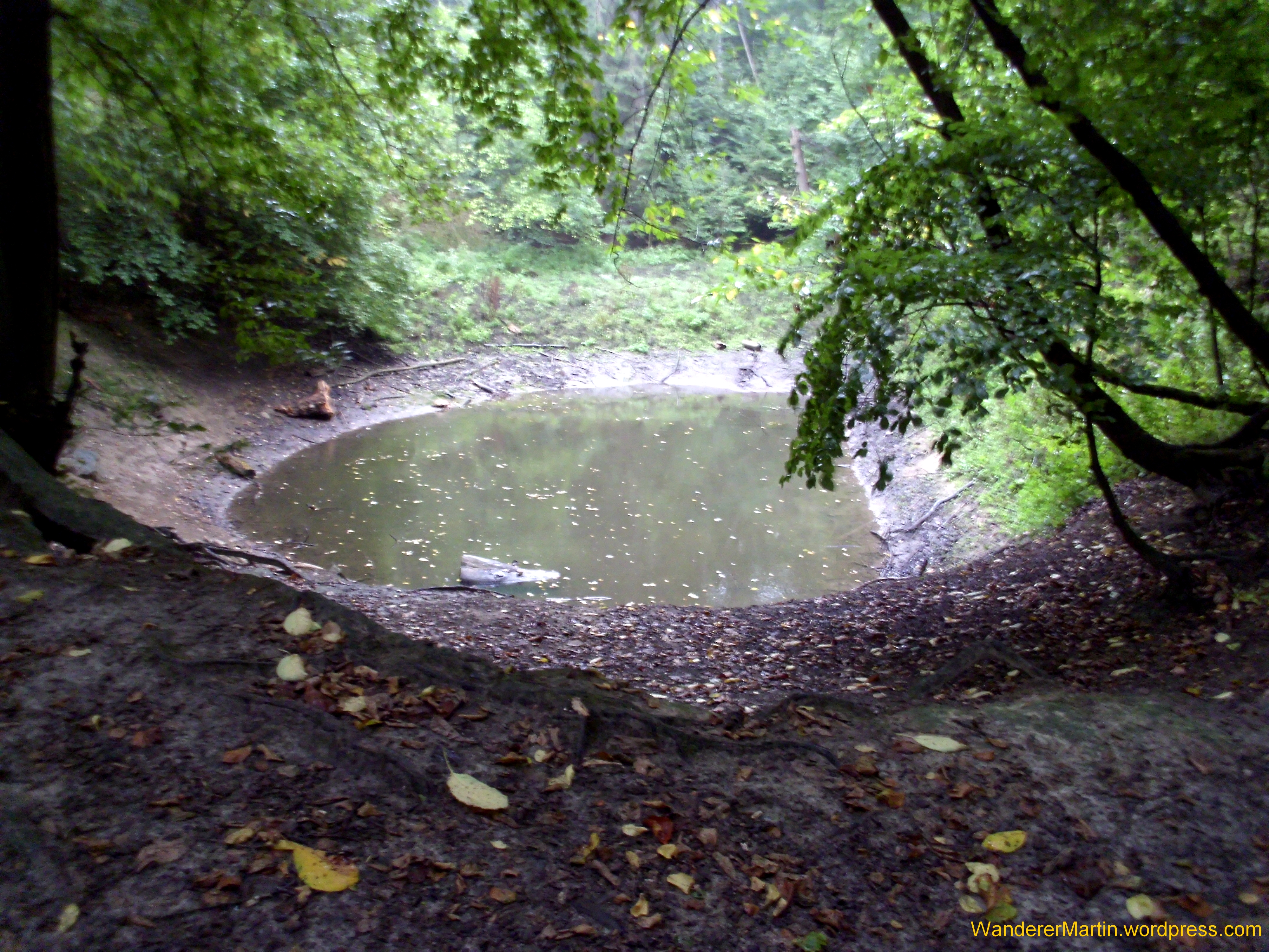 Dissen am Teutoburger Wald – WandererMartin