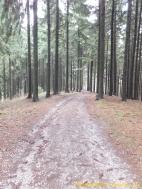 Schotterweg Stempel DSCF1157