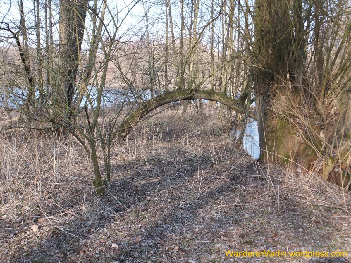 Weststadt, Hakenhofholz, A3