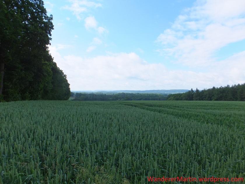 Blick in die Heimat: ganz hinten liegt Wellingholzhausen