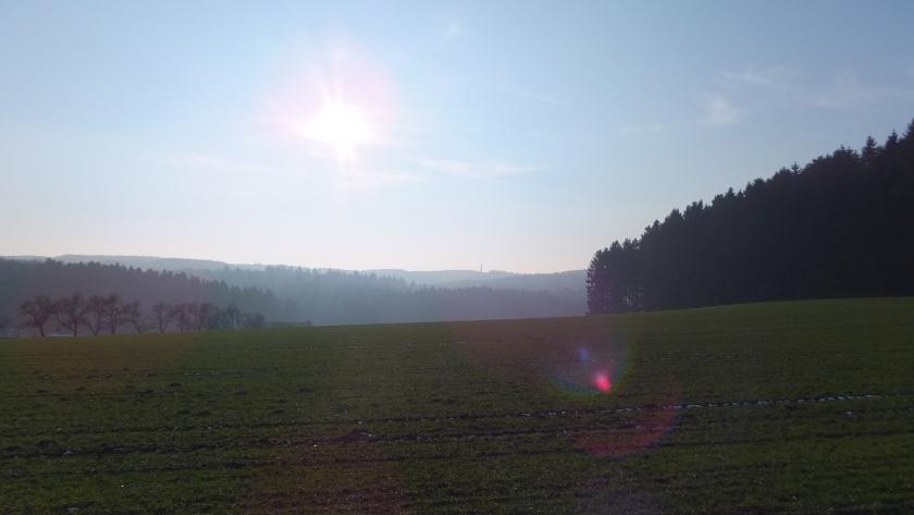Blick nach Süden zum Dissener Aussichtsturm