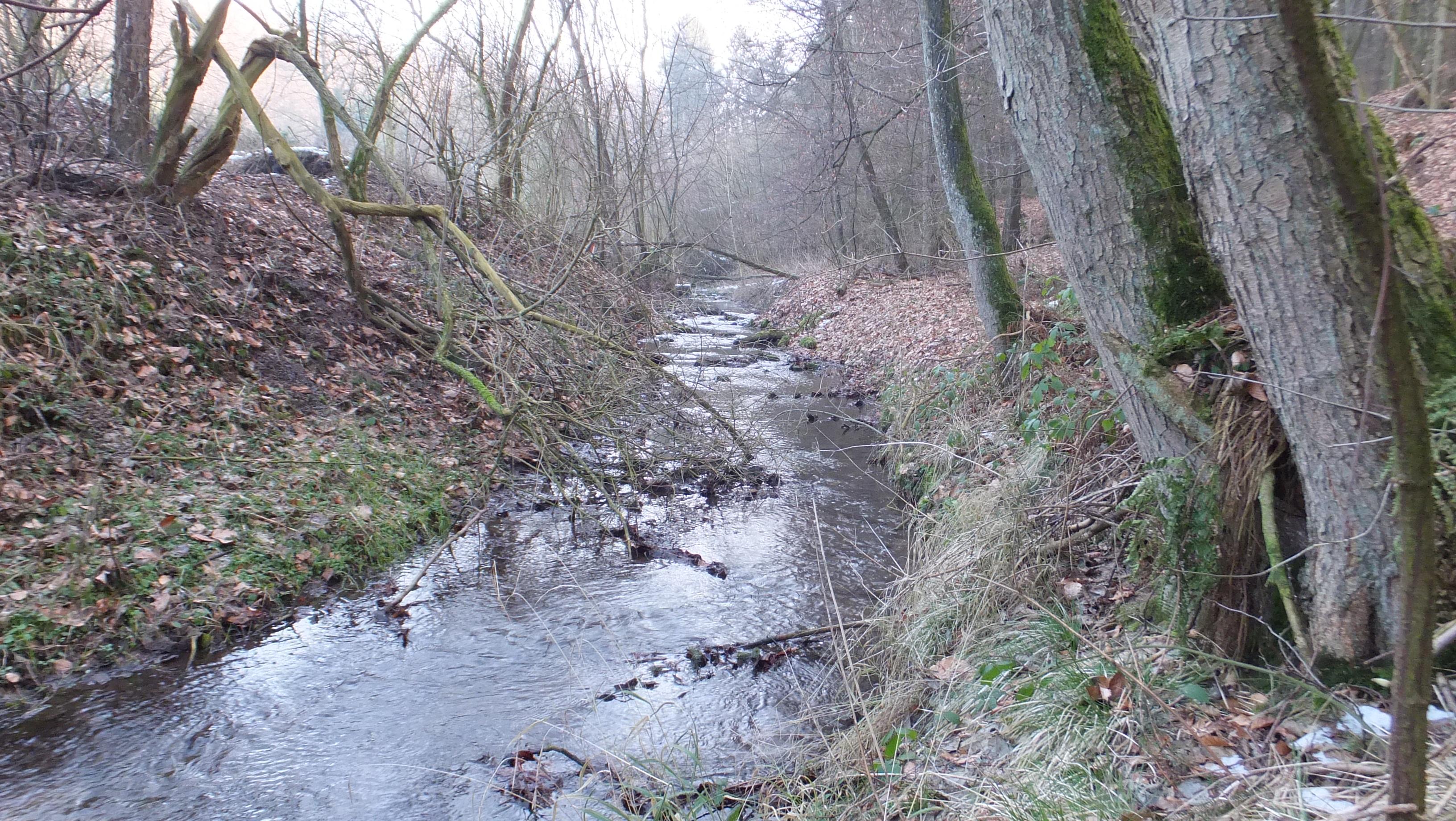 "Nolle, Kronensee Wellingholzhausen, A8 ""Rundweg Hasetal ..."