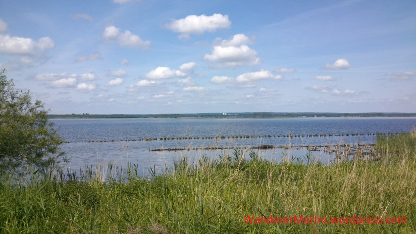 Blick über den Dümmer. Die Pfahlreihe im Vordergrund soll den Wellenschlag am Ufer eindämmen und so das Entstehen von Röhricht fördern.