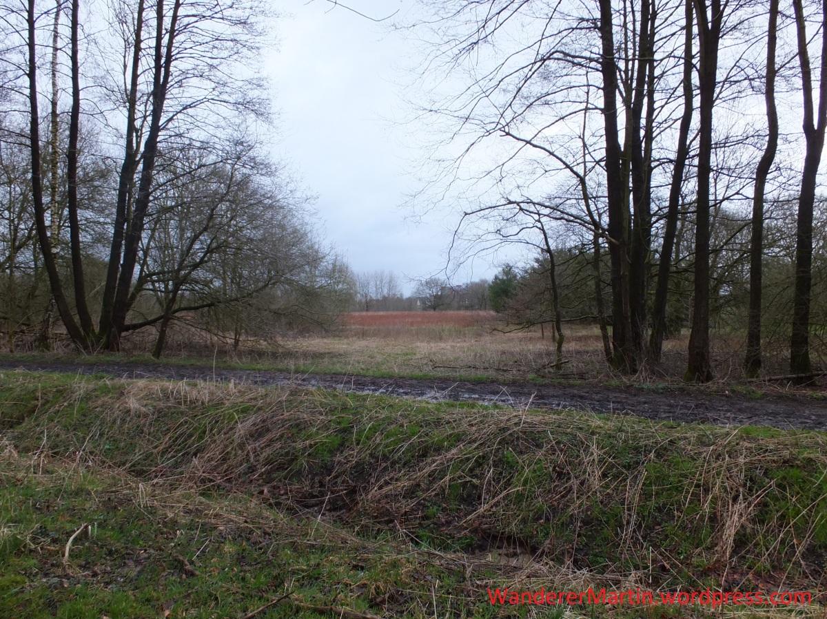 Weststadt, Hakenhofholz, A5