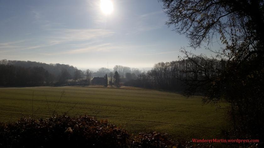 Blick vom Gradweg in die morgendliche Dezembersonne