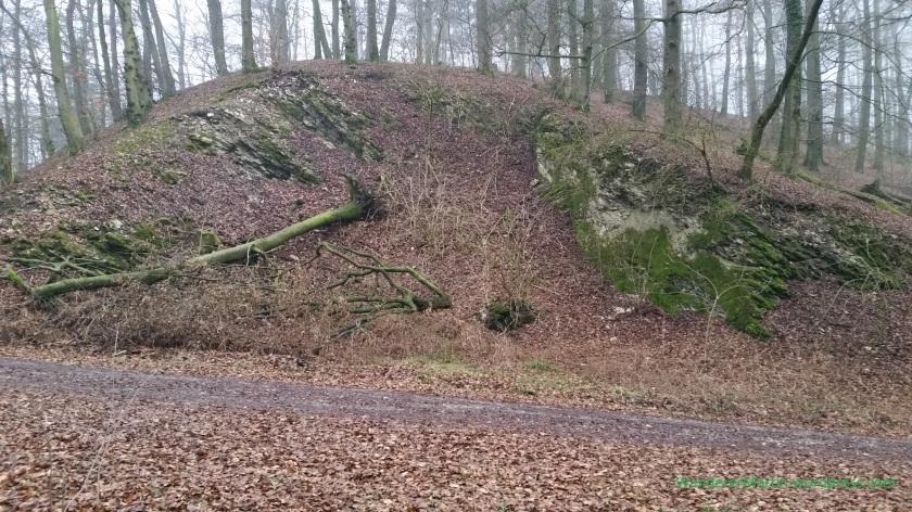 ND Kalksteinklippe am Wehdeberg