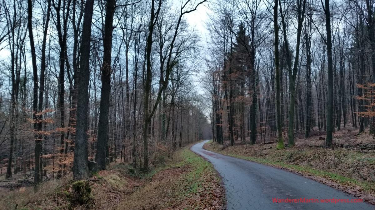 Hankenberge / Waldchaussee, Nr.1