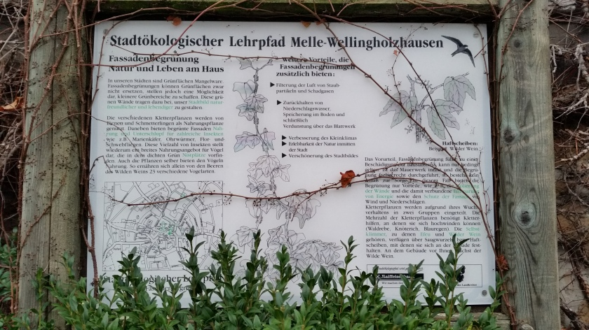 WP Wellingholzhausen (Kirche Haus des Gastes) 2 K