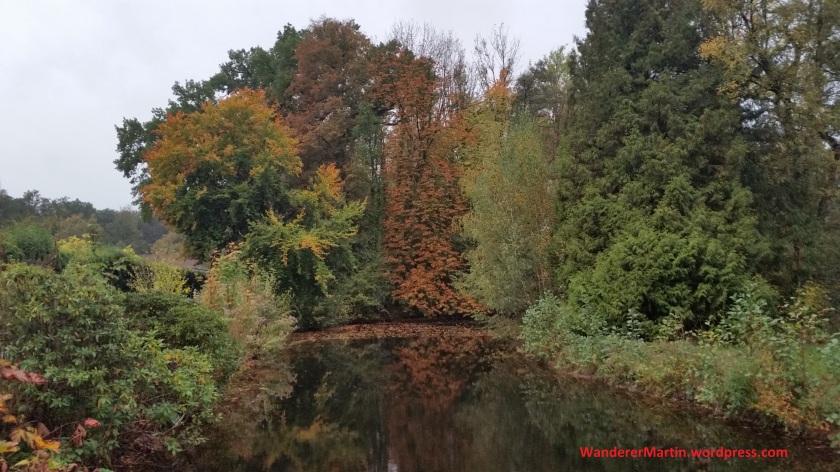 Teich bei der Ippenburg 20191017_082736