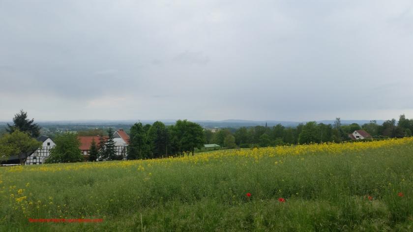 Blick vom südlichen Waldrand 20200513_163706